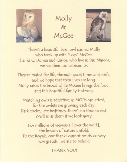 Molly & McGee Poem