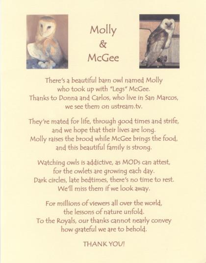 Molly & McGee Poem