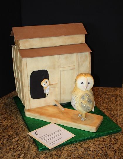 IMG_2769 The Owl Box Cake