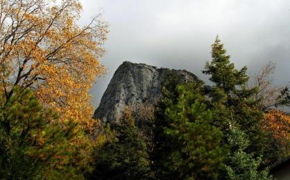 Lilly Rock
